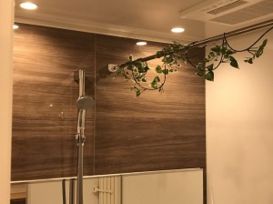 大生新小岩ハイツ浴室
